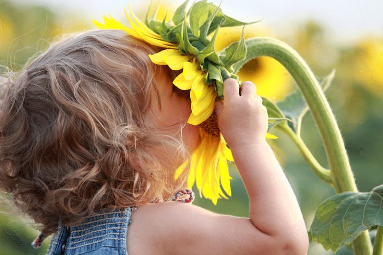 Eine gesunde Darmflora kann das Risiko für die Entwicklung von Allergien deutlich senken.
