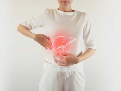 Was tut der Leber gut – was schadet ihr?
