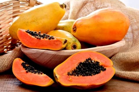 Für eine besonders hohe Qualität der Frucht und einen entsprechenden Gehalt wichtiger Inhaltsstoffe ist ein entsprechender Anbau der Papaya notwendig.