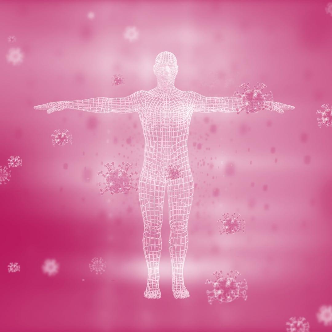 Was belastet das Immunsystem?