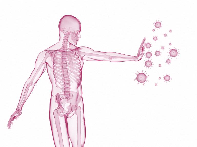 Der Darm ist sehr wichtig für ein gut funktionierendes Immunsystem. Bauen Sie Ihre Darmflora für ein starkes Immunsytem auf!