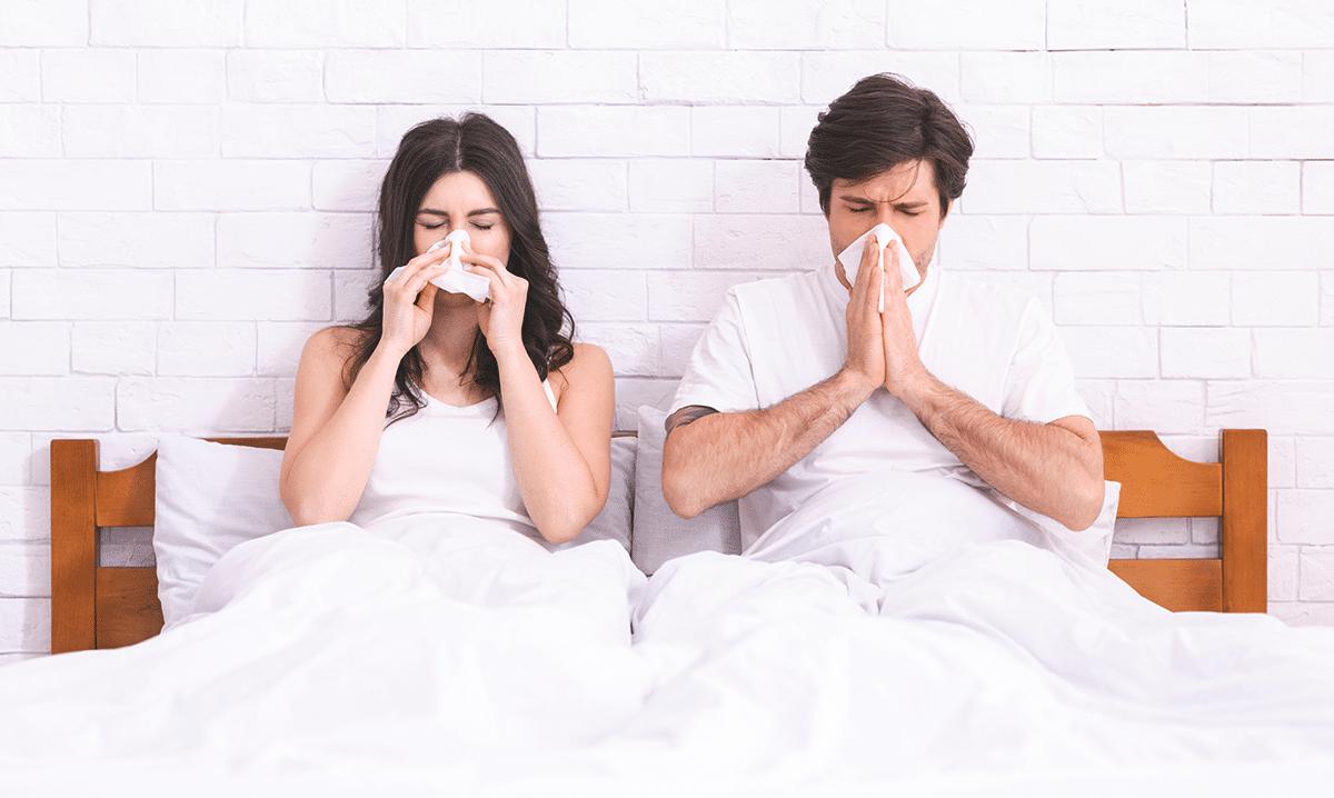 Hausstaubmilbenallergie: Ist das der Grund für Ihre Allergien und Symptome?