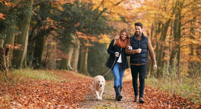 So stärken Sie Ihr Immunsystem im Alltag: Spaziergang